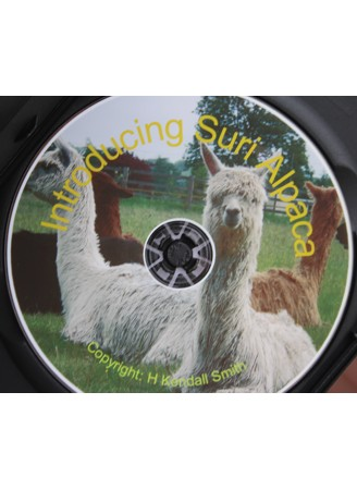 Introducing Suri Alpaca