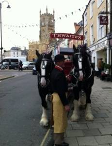 shirehorses1