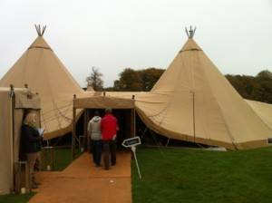 tipees showman web